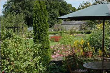 The walled garden at Mornington